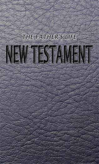 New Testament online and pdf