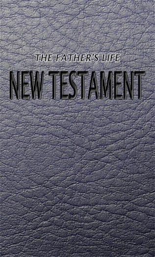 New Testament Cover Pic