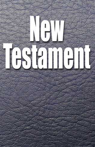 The Father's Life New Testament